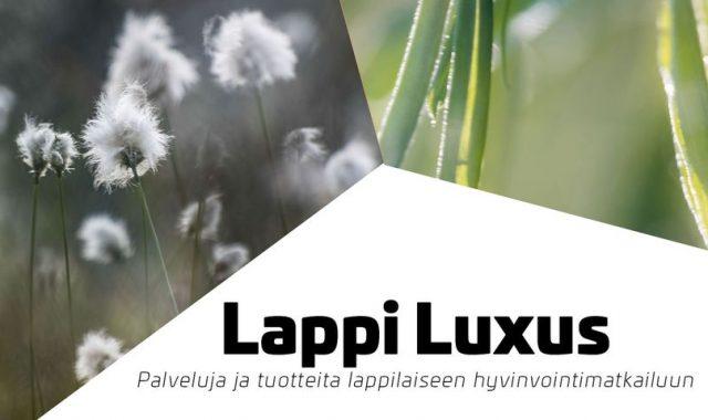 lappi_luxus_tyopajat_2021